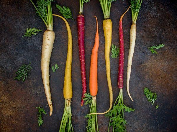 Débuter une monodiète de carottes: bonne ou mauvaise idée?